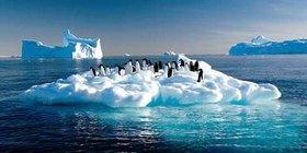 想去南极旅游,又不知道怎么去合适怎么办?